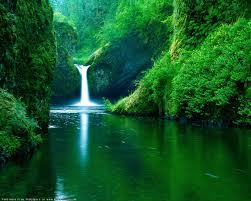 nature summer desktop wallpaper pics 5
