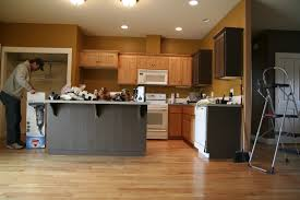 Led Lights For Kitchen Cabinets by Painted Kitchen Cabinets Before And After Black Cook Tops