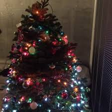 mr jingle u0027s christmas trees temp closed 61 photos u0026 85