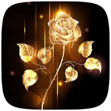 Gold Rose App Gold Rose Theme Apk For Windows Phone Android Games And Apps