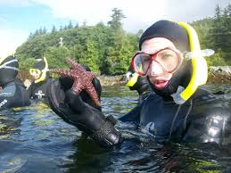 Alaska snorkeling images Snorkel alaska to view alaska wildlife in a whole new way in the jpg