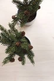 3 real mini trees diys my paradissi