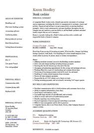 Example Of A Perfect Resume by Resume For Cad Draftsman