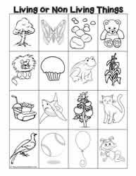 Characteristics Of Living Things Worksheet Middle Characteristics Of Living Things Worksheets
