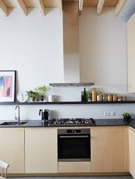 Kitchen Cabinets Particle Board Plywood Kitchen Cabinets Vs Particle Board Home Design Ideas
