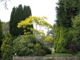 ornamental trees bowden house robin stott cc by sa 2 0