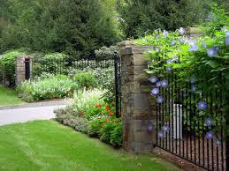 backyard garden free hd images
