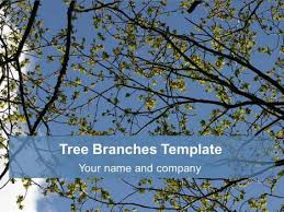 free tree branches background template