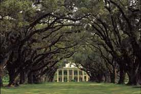 tours new orleans tour the big easy new orleans tours and things to do in louisiana