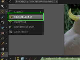 6 easy ways to blur the background of a digital image