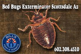 Bed Bug Heat Treatment Cost Estimate by Bed Bug Treatment Cost We Kill Bugs Bills Pest Termite
