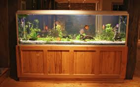 Aquarium For Home Decoration 15 Nice Try Tax Deductions