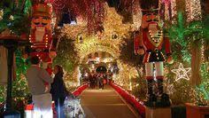 christmas lights riverside ca mission inn festival of lights in riverside ca buckets
