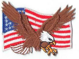 Eagle American Flag Amazon Com Bald Eagle W American Flag Iron On Biker Patch