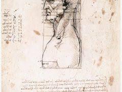 Leonardo Da Vinci Drapery Drapery For A Seated Figure Leonardo Da Vinci Allpanters Org