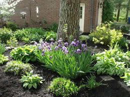 Landscaping Evansville In by Lawn Care Snow Removal Landscaping U0026 Tree Service Evansville In