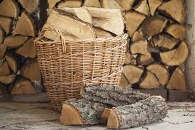 wood for wood burning best wood for wood burning stove or fireplace heater mag
