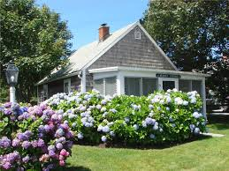 lower cape cod vacation rentals summer rental houses and beach