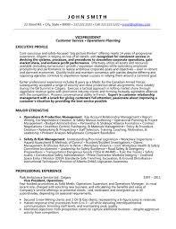 Vp Finance Resume Examples by Download Vice President Resume Samples Haadyaooverbayresort Com