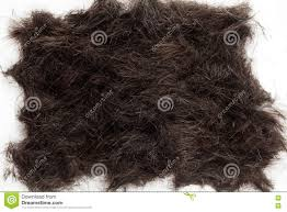 hair cut off on the floor stock photo image 74397029