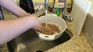 no soak method for cooking dried pinto beans youtube