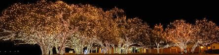johnson city christmas lights best neighborhoods to see christmas lights in austin realty