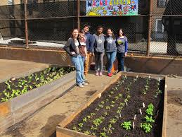 Urban Farm And Garden - grownyc will bring an urban farm to wagner middle