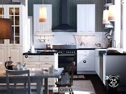 pictures on ikea kitchen design ideas free home designs photos