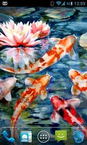 koi live wallpaper version apk free magic touch koi fish android apps on play