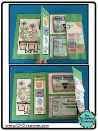 bookish ways in math and science unit resource portfolio plants