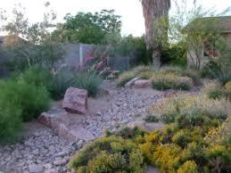 Southwest Landscape Design by Extreme Gardening Designing With Desert Plants Southwest Trees