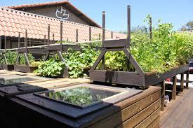 backyard aquaponic systems growing call for for aqua farming