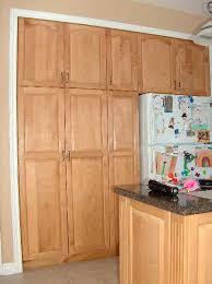 endearing kitchen pantry cabinet 20 amazing kitchen pantry ideas