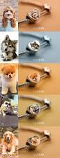 1453 best photo crafts images on pinterest diy creative and