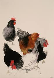 77 best happy hen art for the chicken lovers images on pinterest