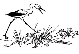 coloring stork pursues frogs picture