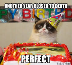 Birthday Meme 30 - happy 1st birthday grumpy cat you changed everyone s life for the