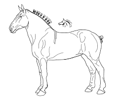 67 best horse lineart images on pinterest horses embroidery