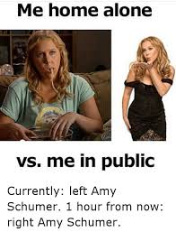 Funny Home Alone Memes - 25 best memes about amy schumer amy schumer memes