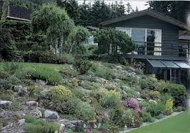 Rock Gardens On Slopes Traditional Rock And Alpine Garden Ideas Howstuffworks