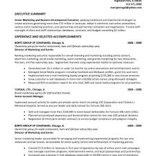 Resume Summary Statement Example by Executive Brief Sample Resume Profile Samples Phd Without Research