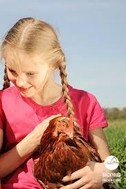 Best Backyard Chicken Breeds by 30 Best Kids Love Chickens Images On Pinterest Chicken Breeds
