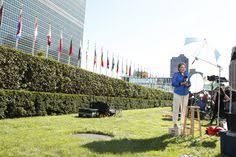 siege des nations unis le protocole aligne les drapeaux des nations unies pour une séance
