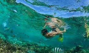 jeep snorkel underwater onboard experience royal caribbean international