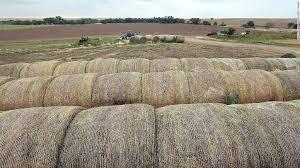 bureau vall dole farming a multi million dollar business