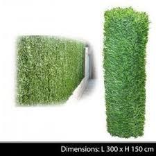 par vue de jardin haie vegetale de jardin cloture de separation ou brise vue