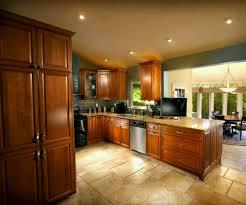 kitchen amusing luxurious kitchen design ideas with dark brown