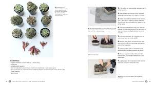 2 Colors That Go Together by Succulents Simplified Growing Designing And Crafting With 100