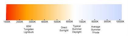 best light for plants best light spectrum for my plants t5 grow light fixtures