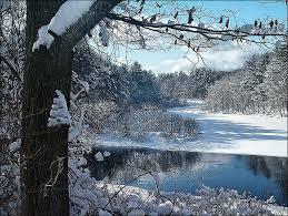 New Hampshire Landscapes images Something wild cold in new hampshire new hampshire public radio jpg